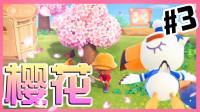 【XY小源】动物之森 第3期 樱花花花花花花花