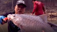 刺鳃鲑鱼 钓鱼技能