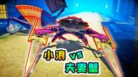 螃蟹大战13:小浪对战夫妻蟹,它们手持双扇双剑