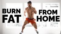 Steve Cook - 15分钟自重减脂训练