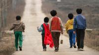 轰动韩国的青蛙少年失踪案,5个孩子离奇消失,11年后被发现叠在一起!《青蛙少年失踪事件》