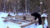 林中建造一个自己的木屋
