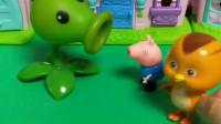 乔治有一个好朋友,去哪里都会带着豌豆射手,听说前面有卖包子的赶紧去
