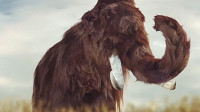 陆地巨兽猛犸象灭绝之谜
