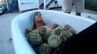 老外作死把3桶仙人球倒下去泡澡,场面太震撼,结果不敢看!