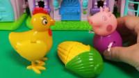 猪奶奶去给大公鸡喂食,结果大公鸡还挑食,不愿意吃这个玉米