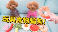 女主人拿玩具食物骗狗能成功吗?泰迪气得当场发飙:你当我傻吗?