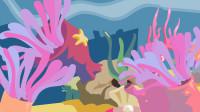 同学们,漂亮海葵原来是肉食动物,你知道它是怎么捕食的吗
