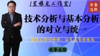 【星雅龙工作室】技术分析与基本分析的对立与统一