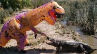 搞笑福利:小伙假扮恐龙调戏鳄鱼,鳄鱼的反应逗笑众人,镜头拍下搞笑一幕-www.nbitc.com,慧之家