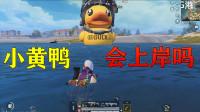 和平精英揭秘真相:小黄鸭游到终点后会凭空消失吗?还是停留在岸上?