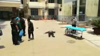 江苏24岁男子在医院坠亡 警方:死者系该院实习生