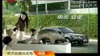 上海大众帕萨特2009新领驭汽车广告