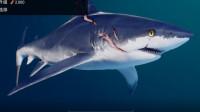 【混沌王】《食人鲨Maneater》实况解说(第二期)