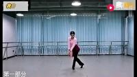 夏辉广场舞我的九寨正面演示及教学