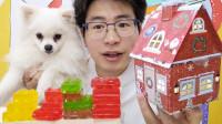 """眼镜哥吃趣味""""积木糖果"""",圣诞小屋藏美味,酸甜弹牙能拼搭"""