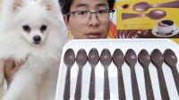 """眼镜哥吃趣味""""咖啡勺子巧克力"""",长柄圆勺好逼真,微苦回甜超赞"""