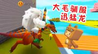 迷你世界生存:3人全力搜寻迅猛龙,熊孩子被虐惨,大毛成功将其驯服!
