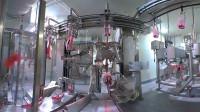 先进的自动化肉类加工流水线,看看你吃的冻羊肉是怎么加工的
