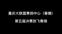 重庆大联盟赛鸽中心(春棚)第五届决赛放飞集锦