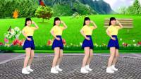 动感DJ广场舞《鸟儿对花说》歌曲欢快动感,简单又好看