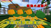 迷你世界:植物大战僵尸,半仙用玉米加农炮堵门,僵尸连门都出不了
