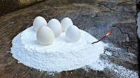 老外奇葩实验:把鸡蛋放在火箭燃料上,结果真是太神奇了!