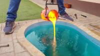 够奇葩!老外为了泡温泉,把1000°的岩浆倒进了泳池,结果你猜怎么着