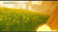 《东邪西毒:终极版》发布重映版预告