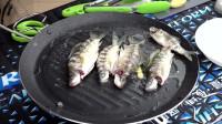 野外钓到的鱼现场煮了吃,味道很鲜!