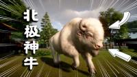 动物园之星41:科考队有大发现,人类首次发现新物种,北极神牛