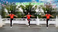 惠水涟江快乐舞步健身操第八套 第11节 跳跃运动《今夜我要梦到你》