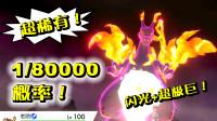 八万分之一概率的喷火龙!超稀有6V闪光超极巨!精灵宝可梦剑盾40b