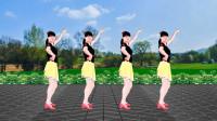 经典老歌广场舞《涛声依旧》新跳法,更简单,更好看!