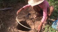 【农村生活】村里小孩自制简单的兔子陷阱,不一会儿就抓到兔子了~