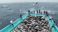 一群人站在船上钓鱼,不到1个钟钓满一船鱼,过程让人大开眼界!