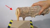 在真空中能将木头变成液体吗?放真空箱内加热,看变化就知道了!