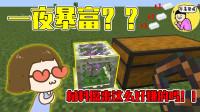 我的世界mod:小小的箱子能使人一夜暴富?大量矿石凭空出现在箱子中