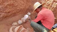 洛阳西汉墓葬出土盛有液体的青铜方壶 推测疑似千年美酒待检验