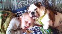 狗狗陪宝宝睡觉觉,睡得可香啦,妈妈都妒忌了