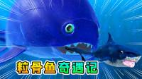 海底大猎杀15:粒骨鱼登场,吞了海龙的肉块后,变得巨大无比