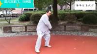 号称武林高手的马保国大师,打了一套太极拳,我好想笑