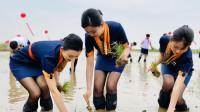 青岛航空回应穿制服下地插秧:临时设置的体验环节
