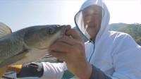 小筏竿筏钓草鱼,实力遛鱼全过程