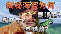 【不止游戏】揭秘海盗为何总是戴眼罩,钩子手,肩上还站只鹦鹉?