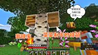 我的世界生存日记第二季07:采蜂蜜做蜂箱,菜菜和蜜蜂亲密接触