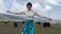 草原姑娘展示家乡舞蹈,舞姿优美潇洒帅气,而且不专业人跳得都精彩!