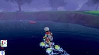精灵宝可梦剑97:终于抓到拉普拉斯了