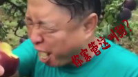 搞笑视频:我家李子特别甜 你看我表情就知道