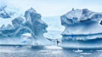 南极冰间湖之谜:极寒水面为何常年不结冰?